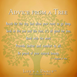 Advice from a tree3